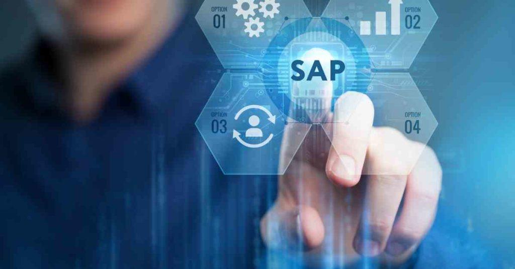 SAP: tipos de software de mantenimiento